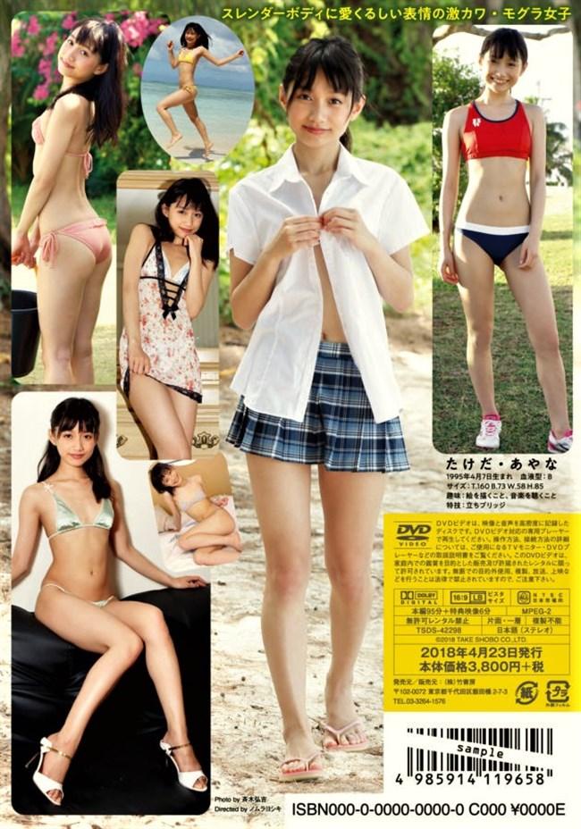 武田あやな~スレンダーで貧乳な水着姿がエロ可愛過ぎて最高に興奮させるぞ!0005shikogin