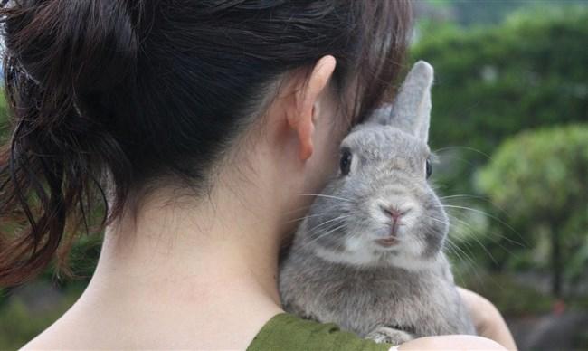 女性が髪をかき上げた時の綺麗なうなじをおかずに出来るワイ将wwwww0002shikogin