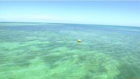 Ikuumi Hisamatsu frolicking on the beach011