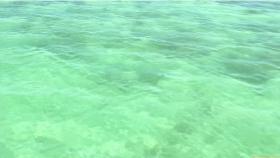 Ikuumi Hisamatsu frolicking on the beach014