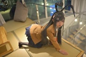 Mai Sakurajima Uniform Bunny Girl Youthful Pi g Bastard Doesnt See Bunny Girl Senpais Dream008