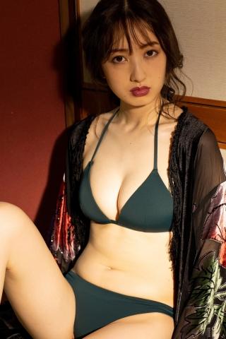 Haruka Dan noble summer bikini013