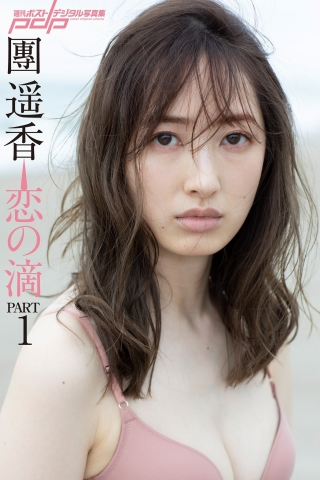 Haruka Dan noble summer bikini014