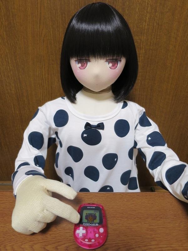 IMG_0062 - コピー (2)