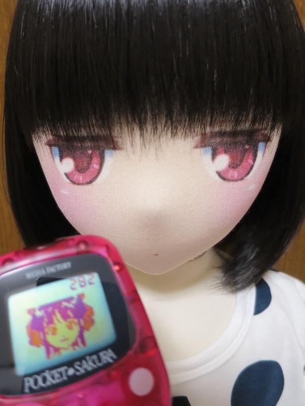 IMG_0065 - コピー (2)