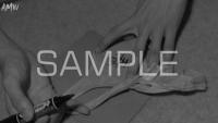 B-D-C-S-SYUN-2017-22-photo-sample (6)