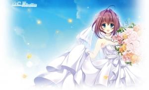 dc2_dearest_marriage00000.jpg