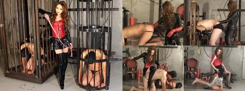 ミストレスランド 綺羅女王様 動画 MLDO-155 真性奴隷への洗脳と改造