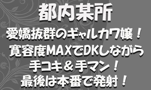 FC2用サムネイル_特別_新372