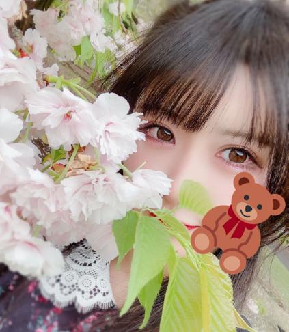 yamamoto4.png