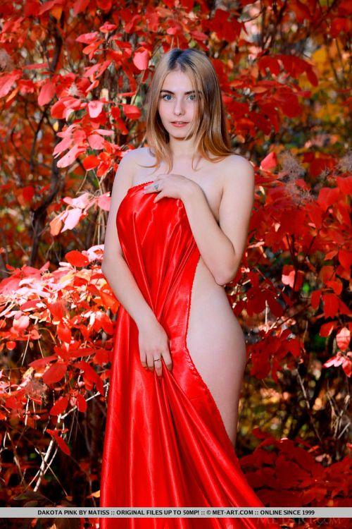 Dakota Pink - BLOOMS 02