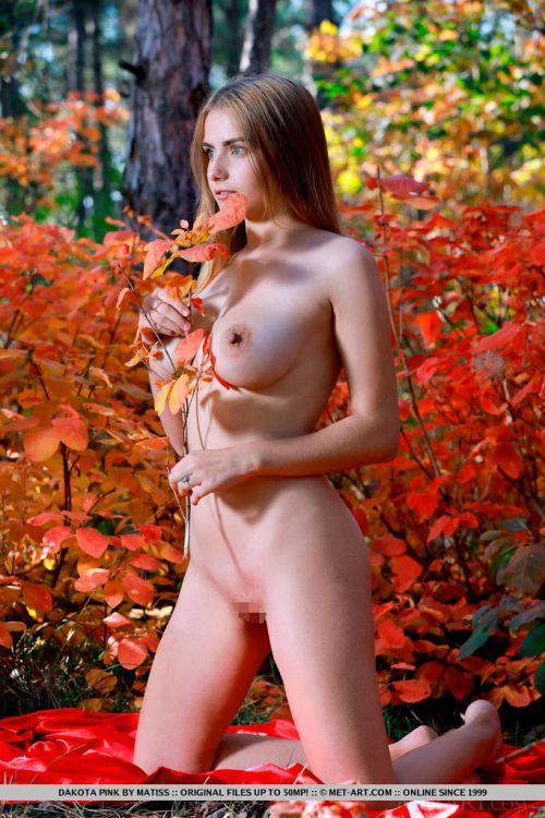 Dakota Pink - BLOOMS 09