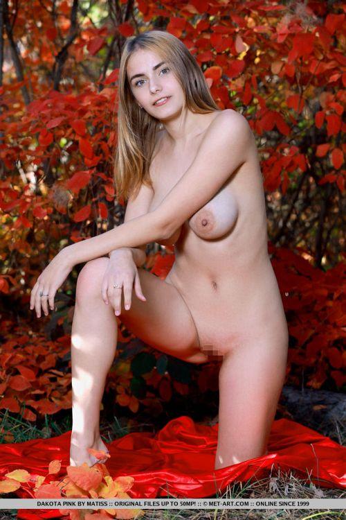 Dakota Pink - BLOOMS 12