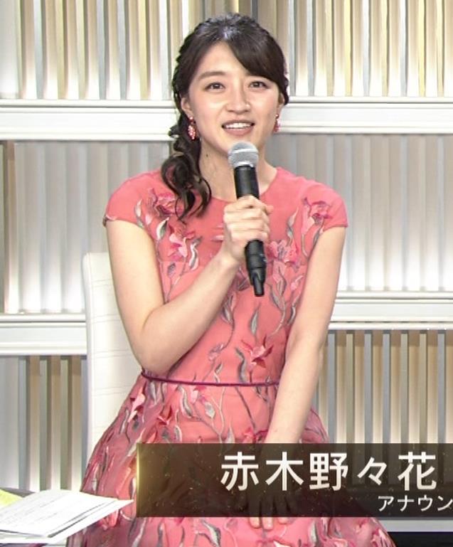赤木野々花アナ ドレスみたいなワンピースキャプ・エロ画像2