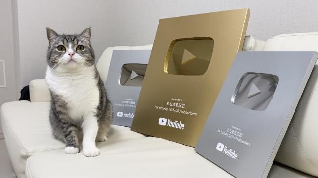 【朗報】大物猫系YouTuber、猫で稼いだ金で三階建ての一軒家を買う