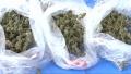 大田竜次容疑者・押収された大麻など