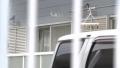 殺人容疑で阿部正春容疑者を逮捕3