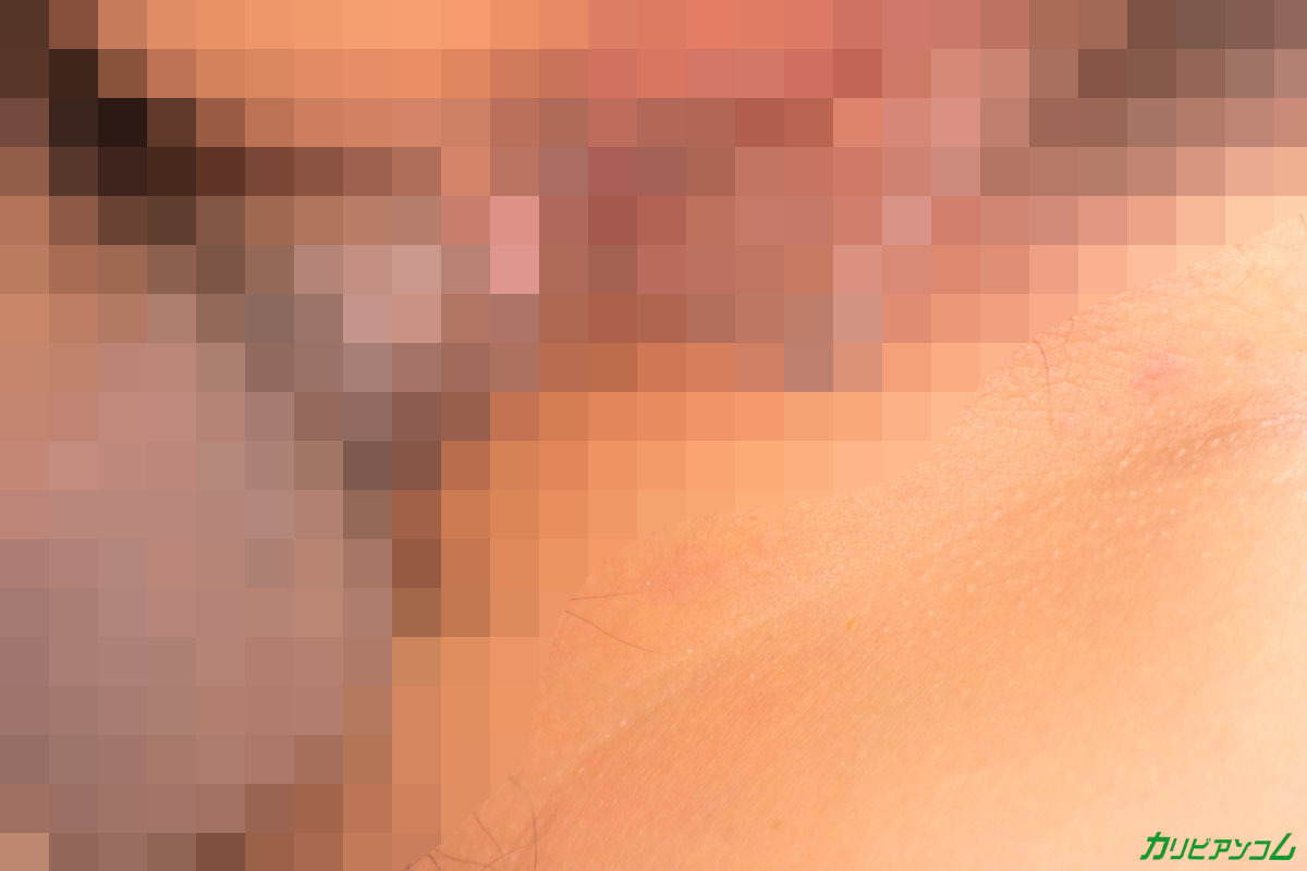 エロ画像22